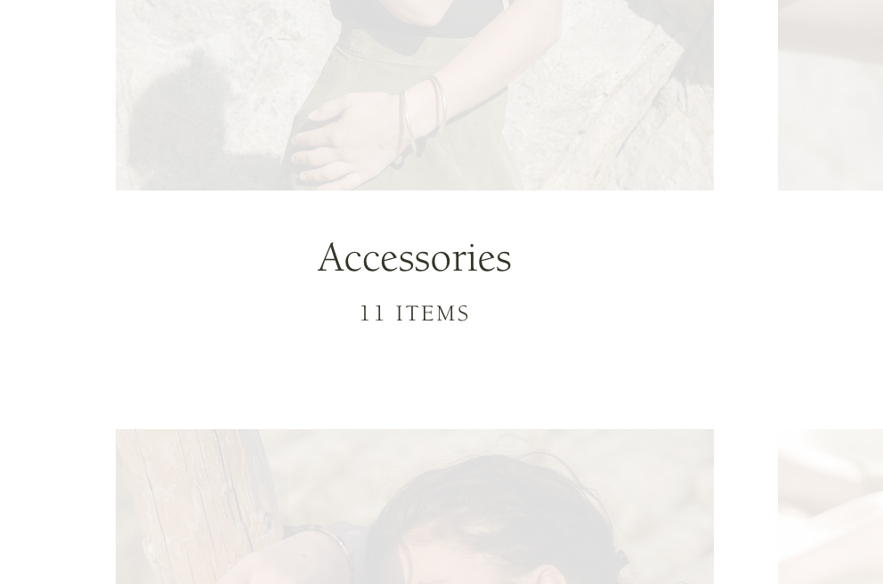 accessories_collections_has_11_products.png