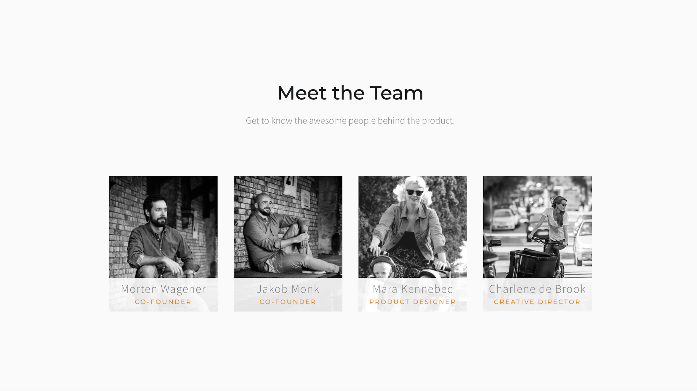 meet_the_team_page_in_launch_bold_demo_with_headings.png